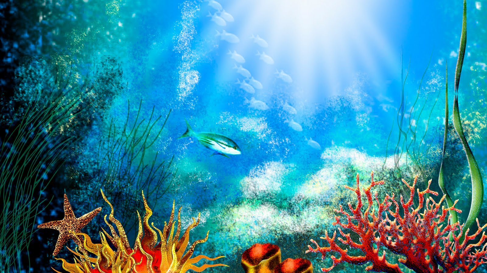 Aquarium screensaver fish tank 1080p hd - Desktop Aquarium Hd Wallpaper The Wallpaper Database