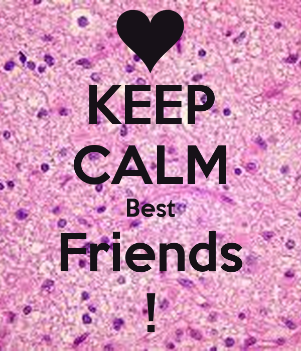 Best Friends Forever 600x700