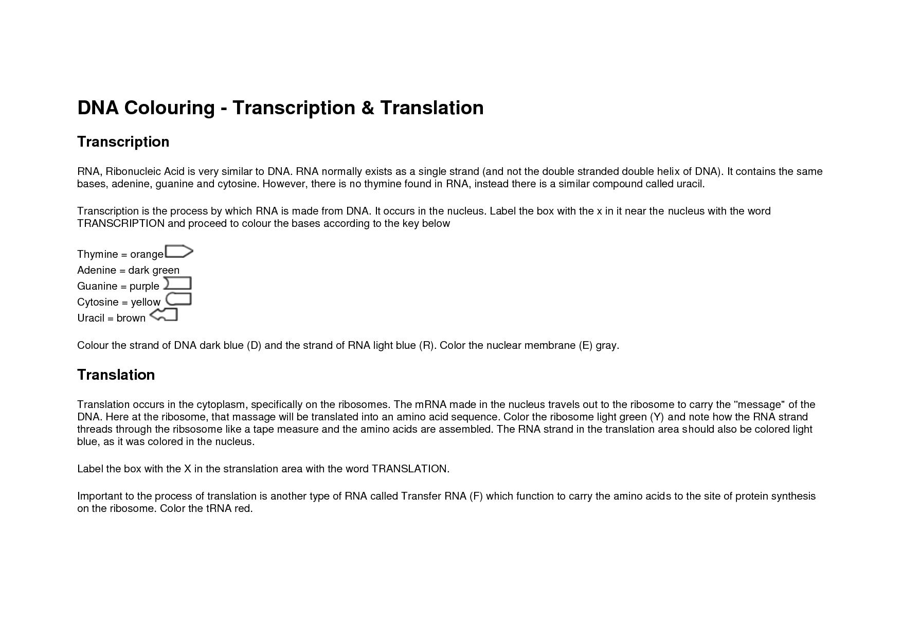 Yellow Wallpaper Worksheet Answers WallpaperSafari – Transcription Translation Worksheet