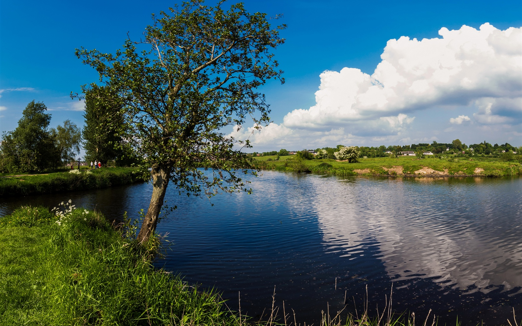 Wallpaper Northern Ireland Portadown UK lake tree grass 1680x1050