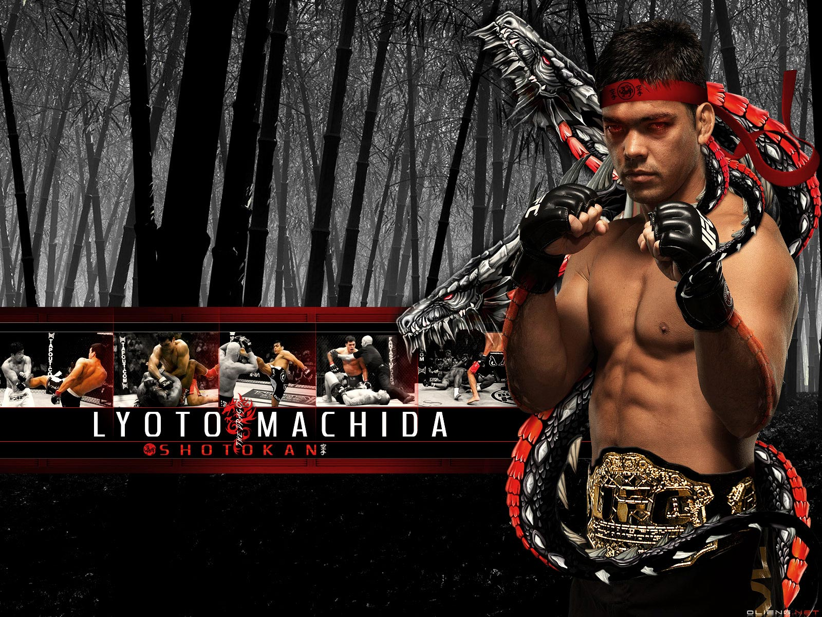UFC Wallpapers 1600x1200