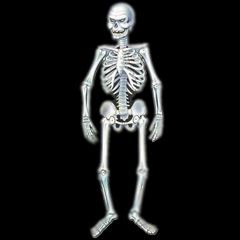 halloween skeleton wallpaper - photo #29