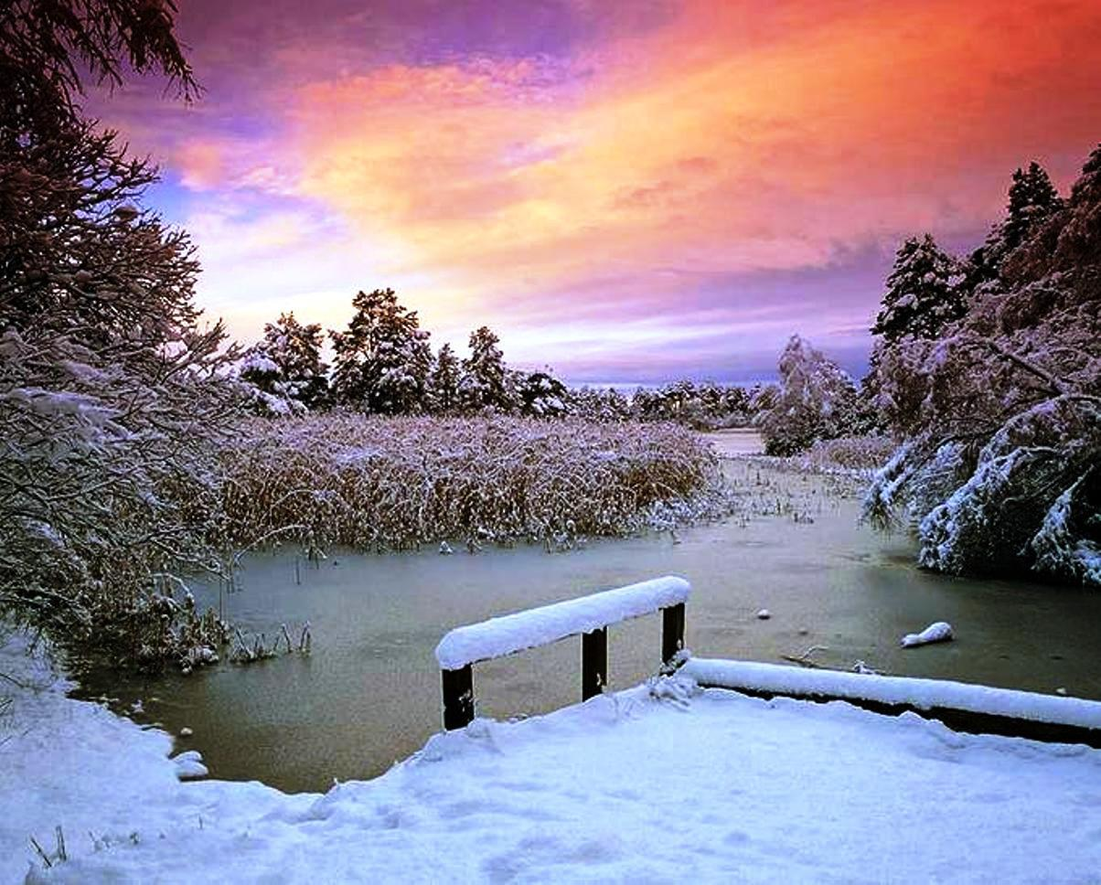 Early winter morning HQ WALLPAPER   146289 1204x968