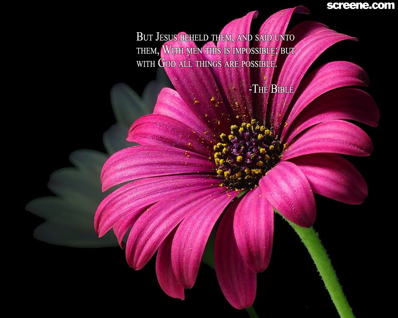 Free Download Flower Background Wallpaper Christian Wallpapers And