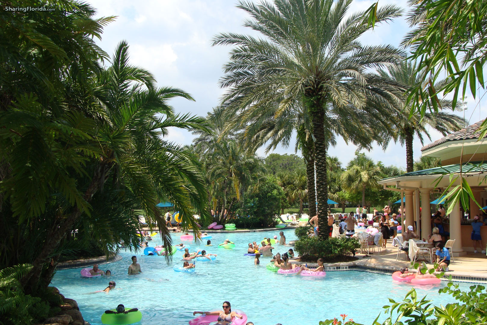 Florida Swimming Pool Wallpaper   Lazy River Wallpaper from Orlando 1620x1080