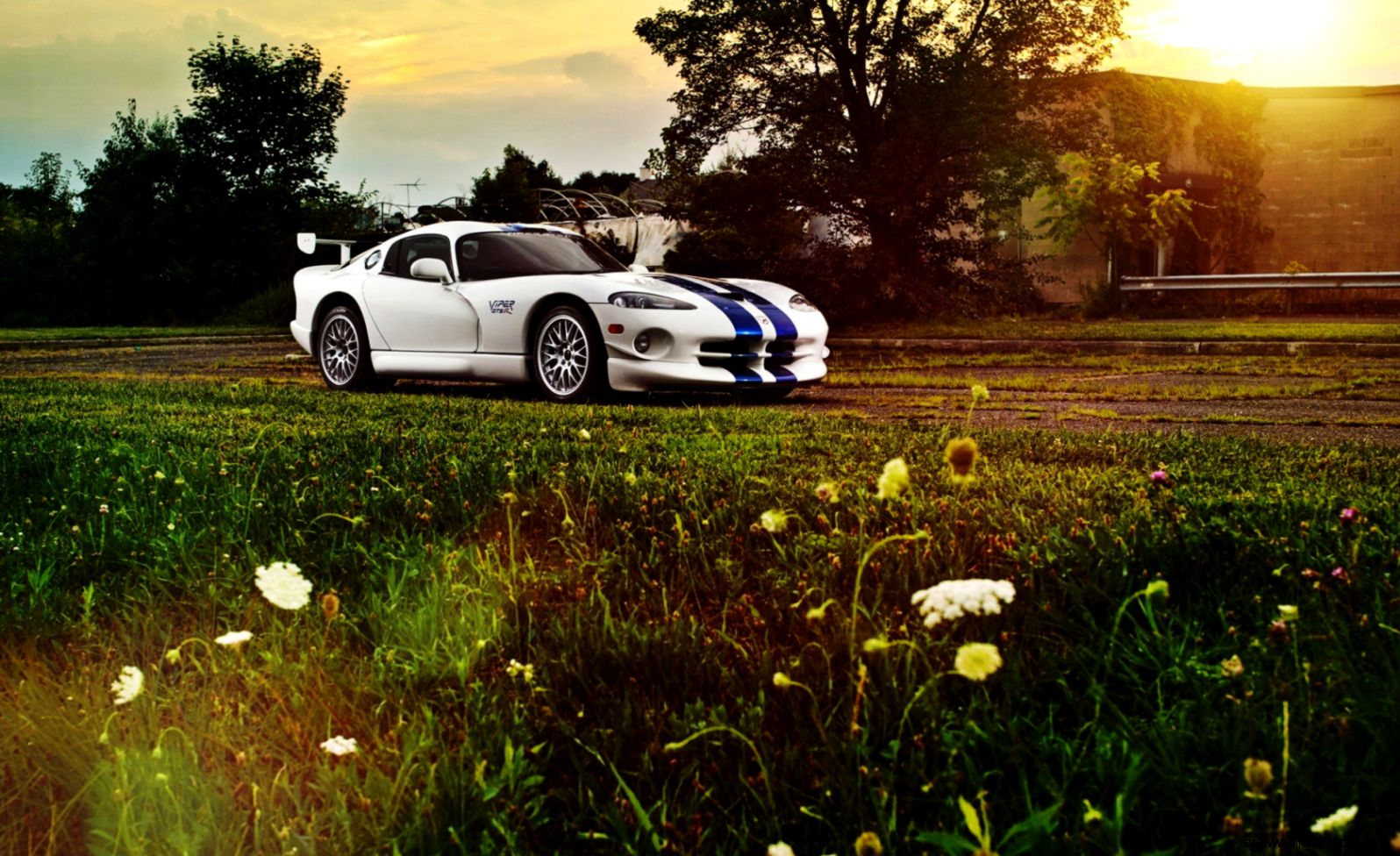 Viper Gts Wallpaper View Wallpapers 1596x976