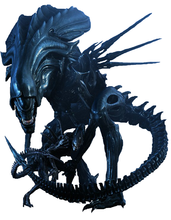 Xenomorph Queen Wallpaper Alien Queen Wallpaper ...