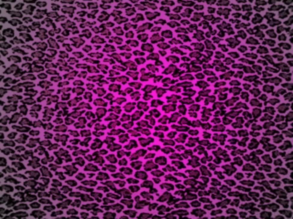 Purple leopard print wallpaper wallpapersafari - Purple cheetah print background ...