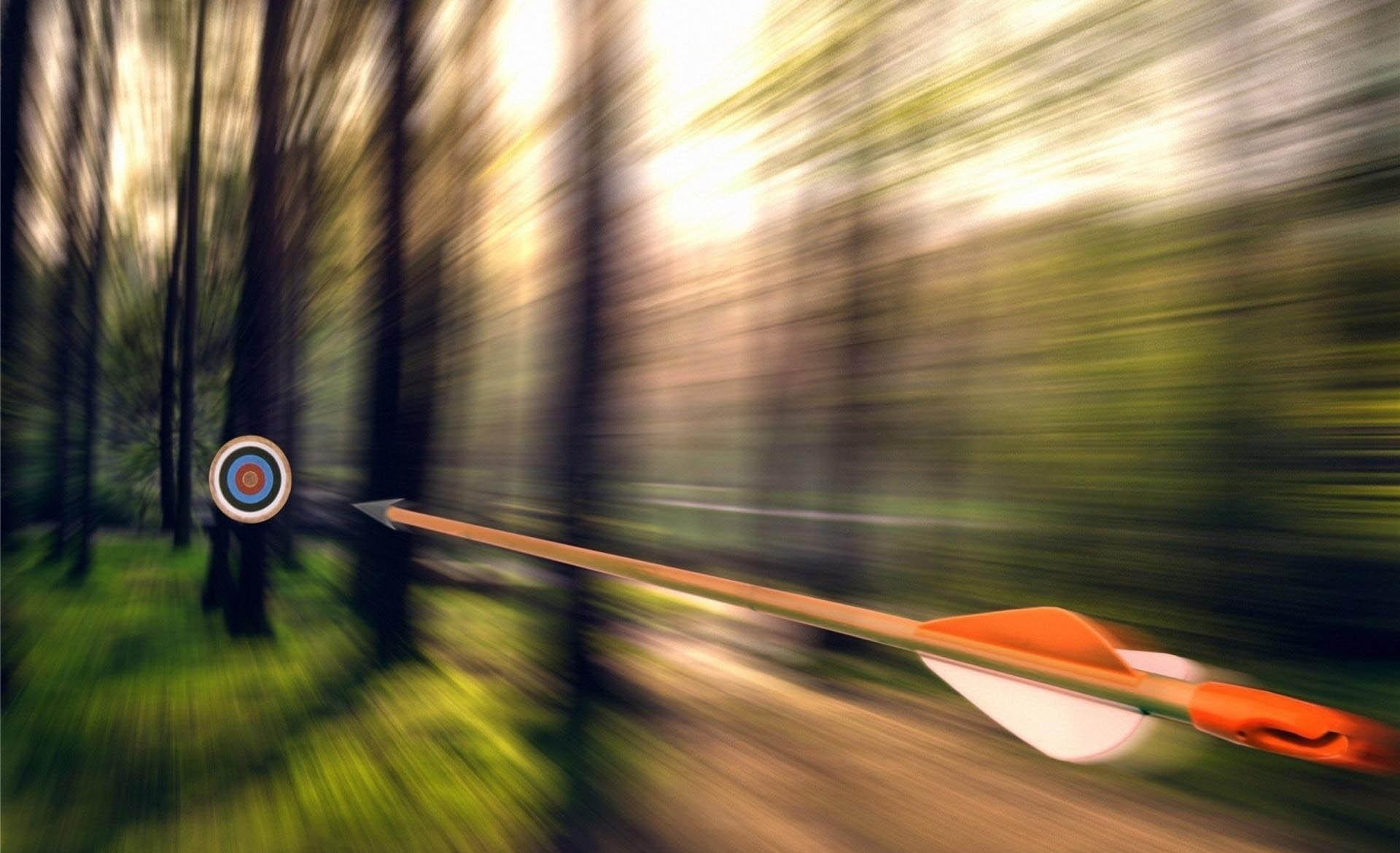 Wallpaper arrow target weeds target archery tree forest desktop 1920x1171