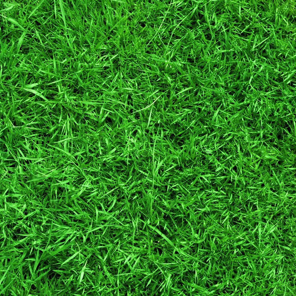 Grass Paper Wallpaper Wallpapersafari