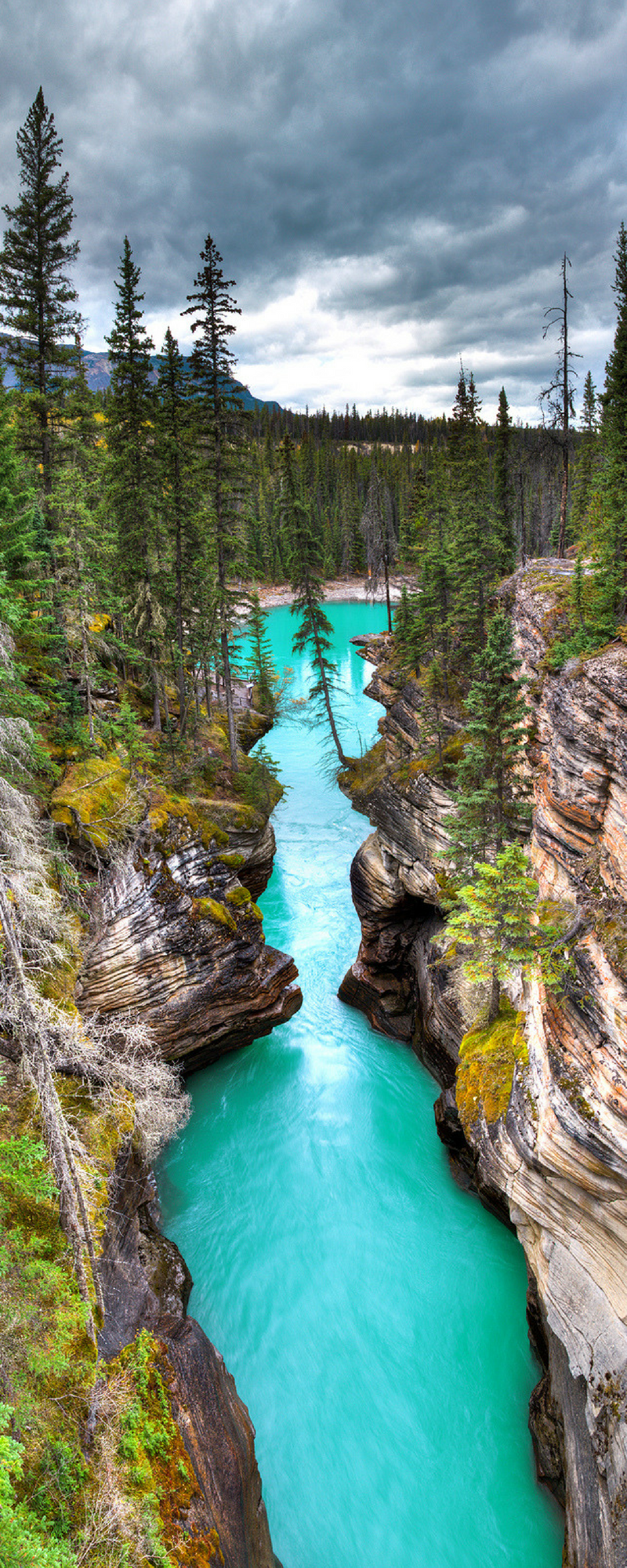 10 Amazing Places to Visit in Alberta Canada Budget travel 800x2000