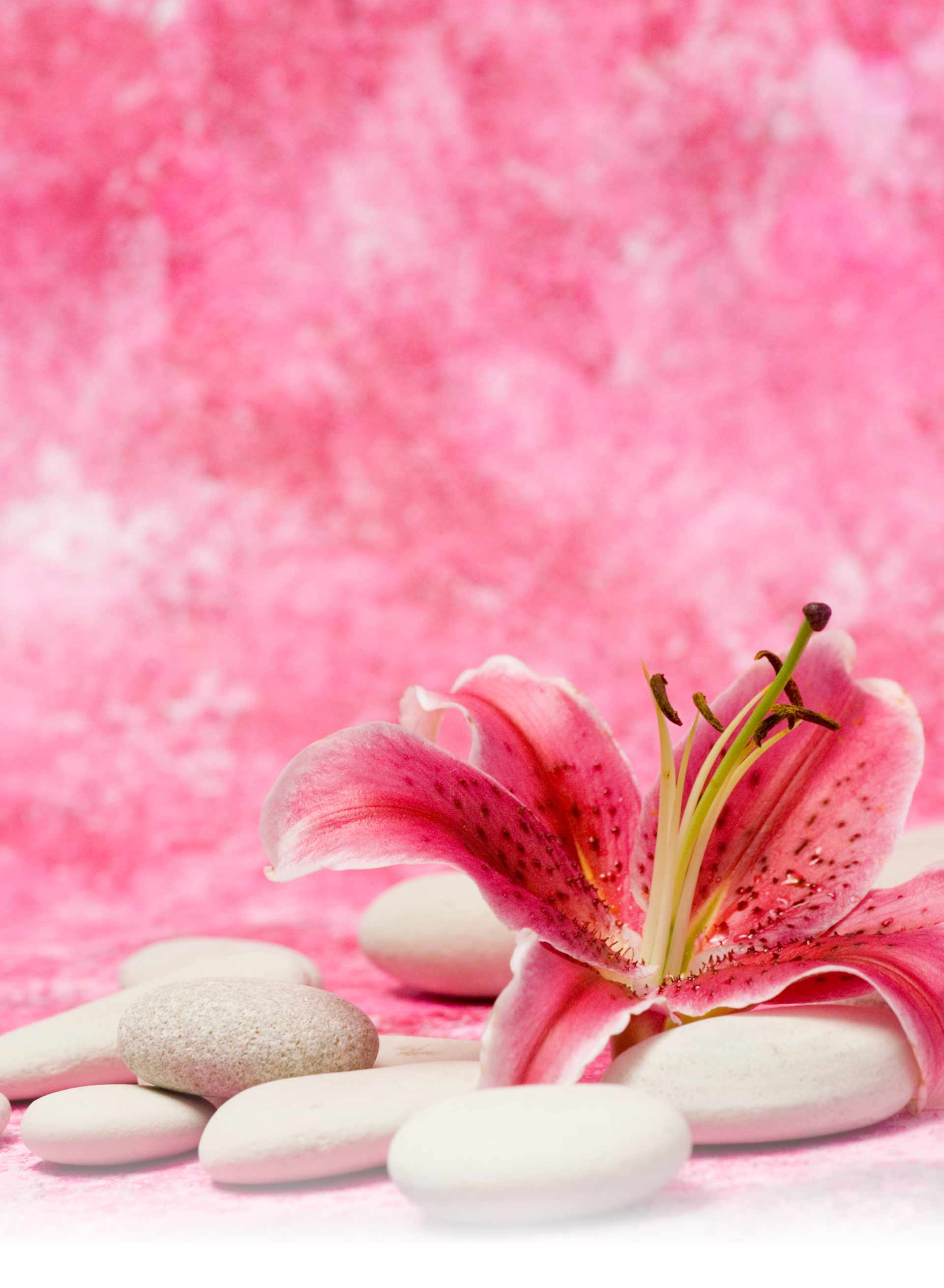 beauty salon wallpaper backgrounds - photo #36
