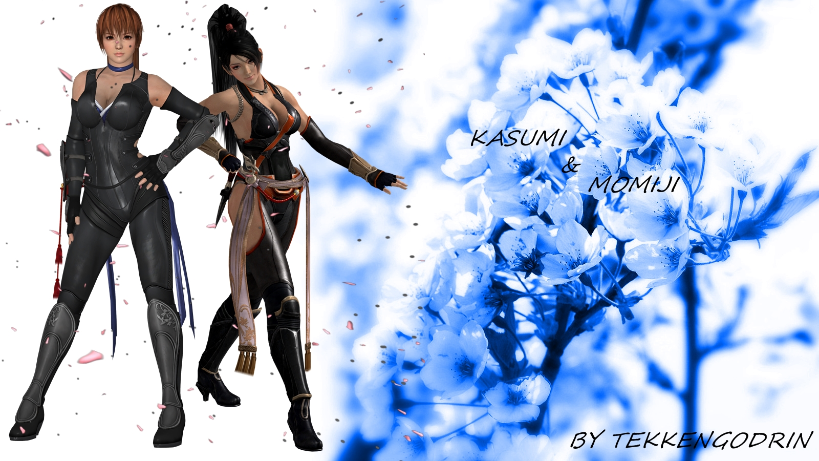 Dead Or Alive 5 Kasumi and Momiji Wallpaper by TekkenGodRin on 1600x900