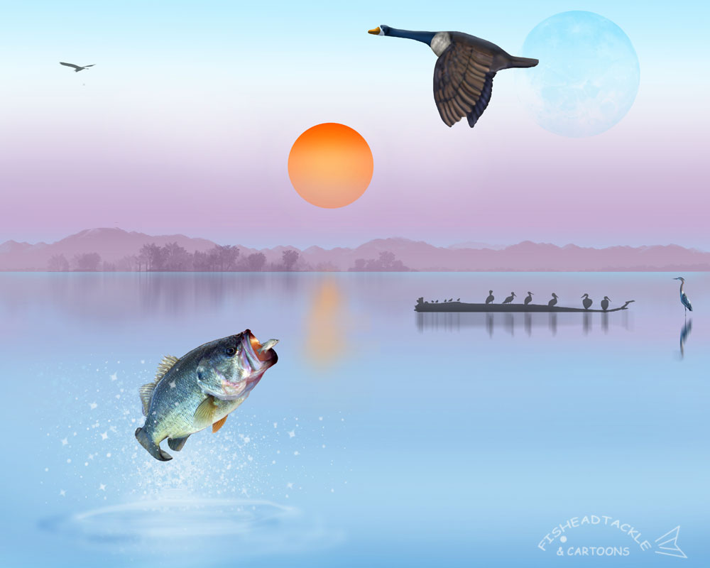 Fish R Bass Fishing Wallpaper 1000x800