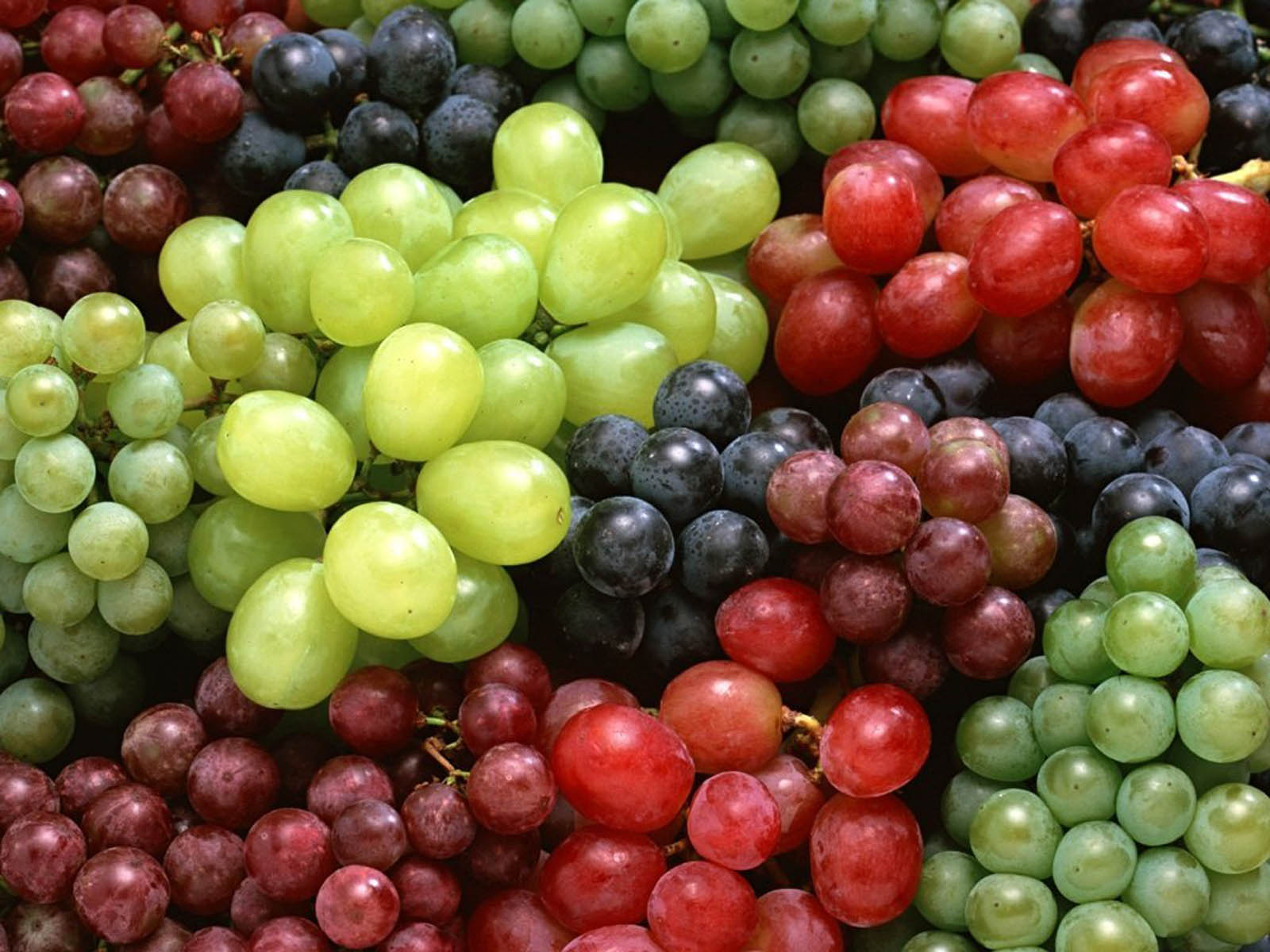 tag red grapes wallpapers images paos pictures and backgrounds for 1600x1200