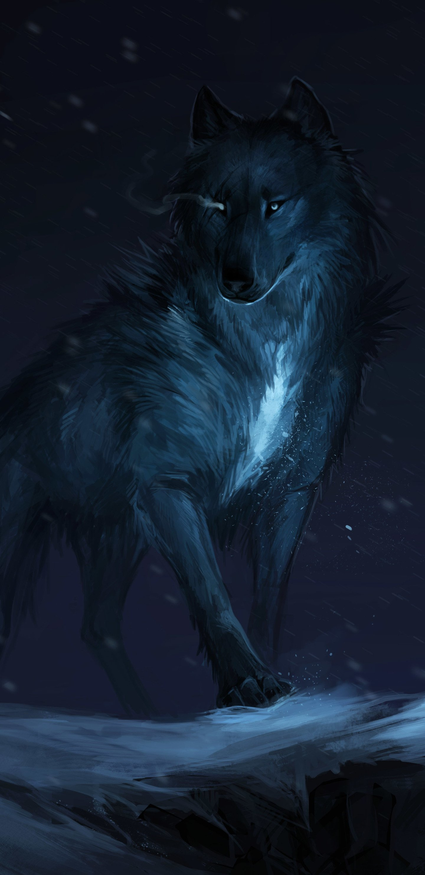 80 Galaxy Wolf Wallpapers on WallpaperPlay 1440x2960