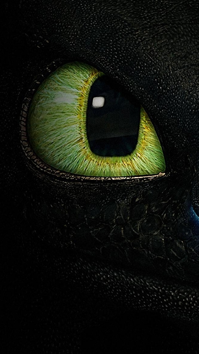 iPhone Wallpaper How to train your dragon Toothless   My HD Wallpapers 640x1136