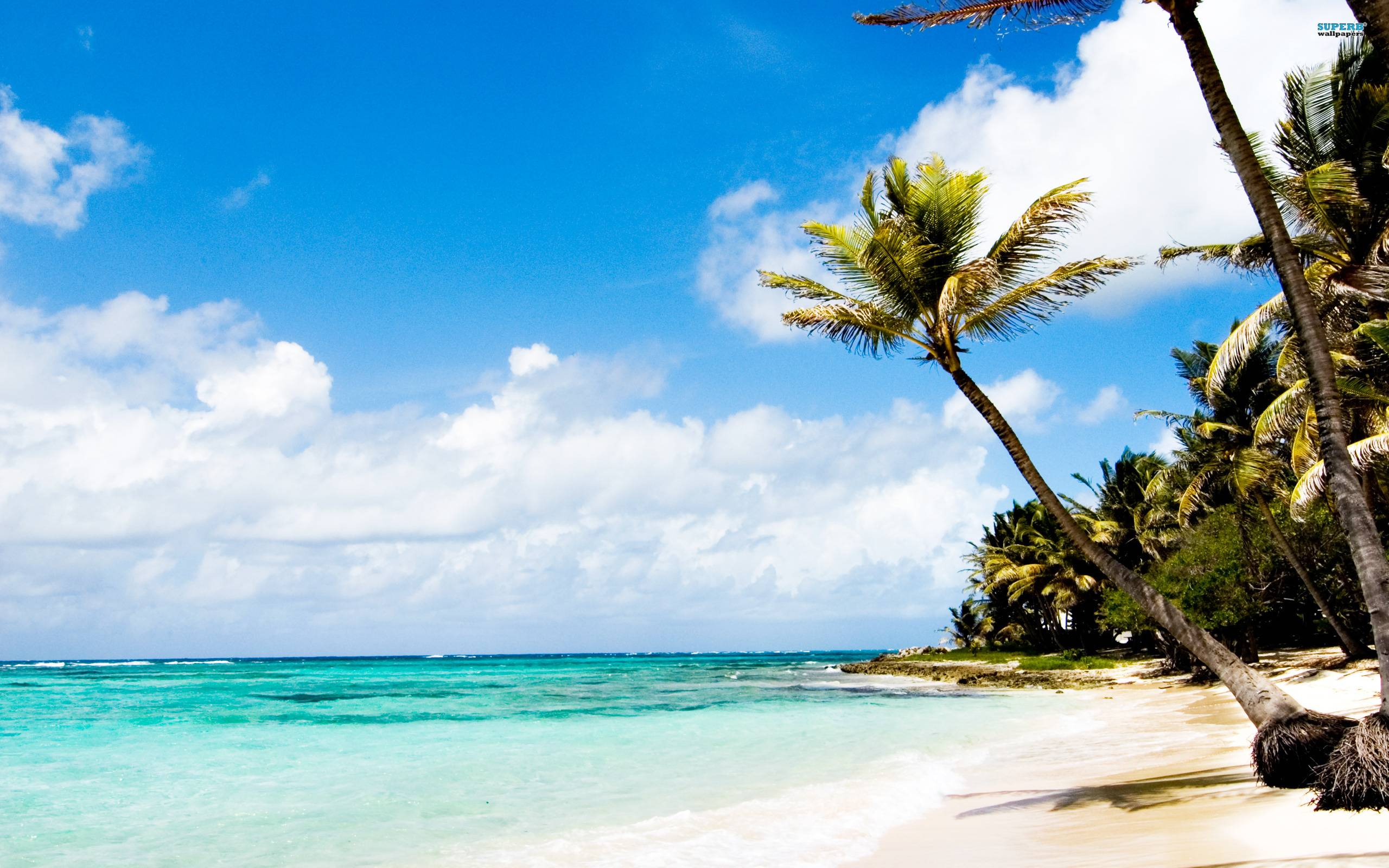 Caribbean Islands Wallpapers 2560x1600