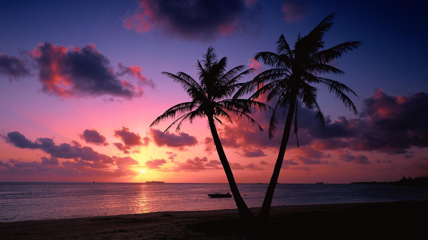 Sunset on a tropical beach wallpaper 6856 1366x768