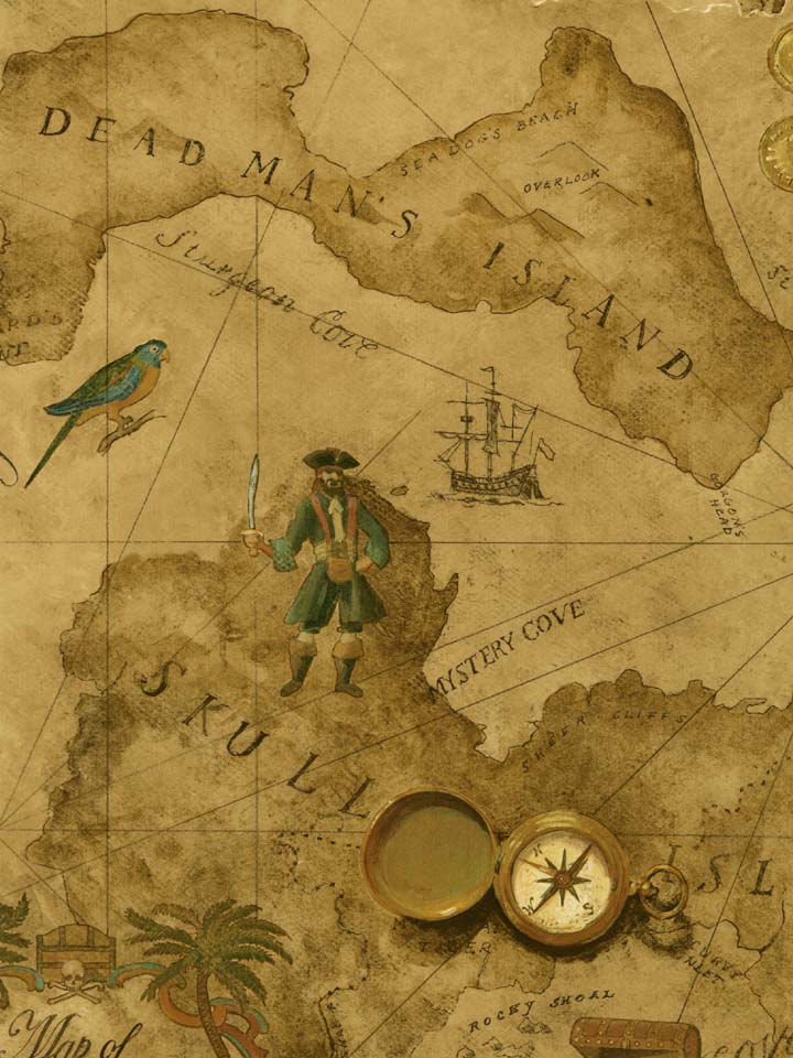 Treasure Map Wallpaper Wall Sticker Outlet Wallpaper in Pixels 720x960