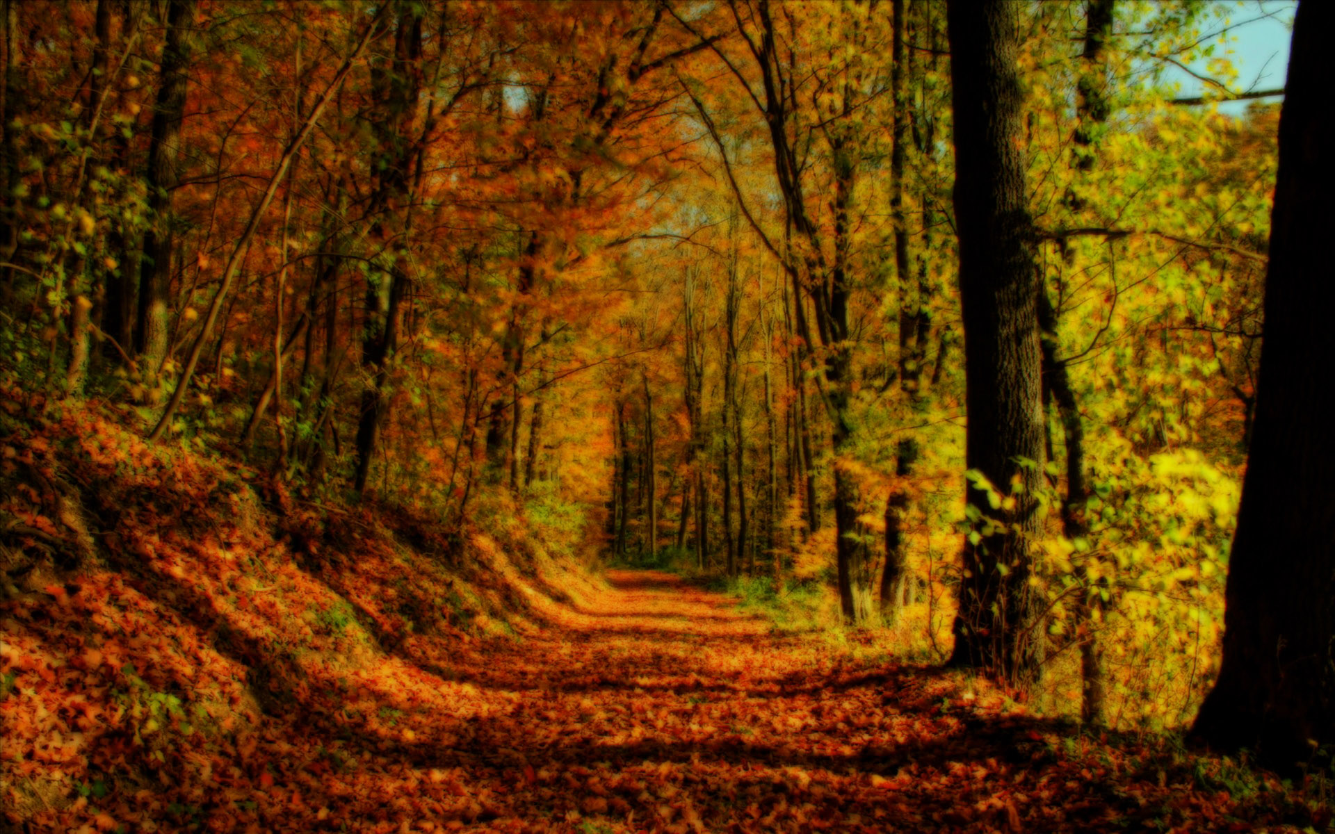 Fall Landscapes Wallpaper Wallpapersafari