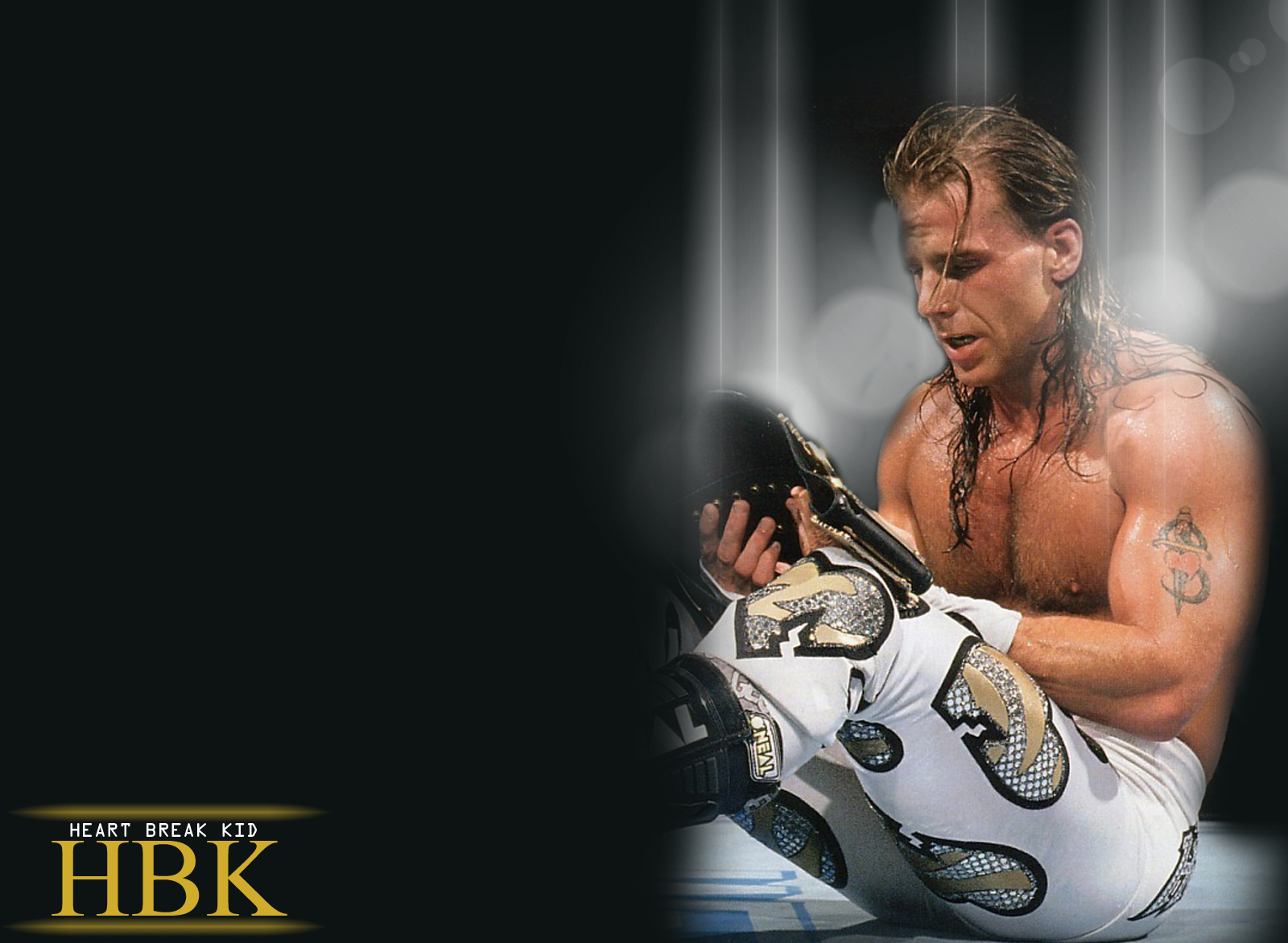 Shawn Michaels HD Wallpapers   BackgroundHDWallpapers 1600x1172