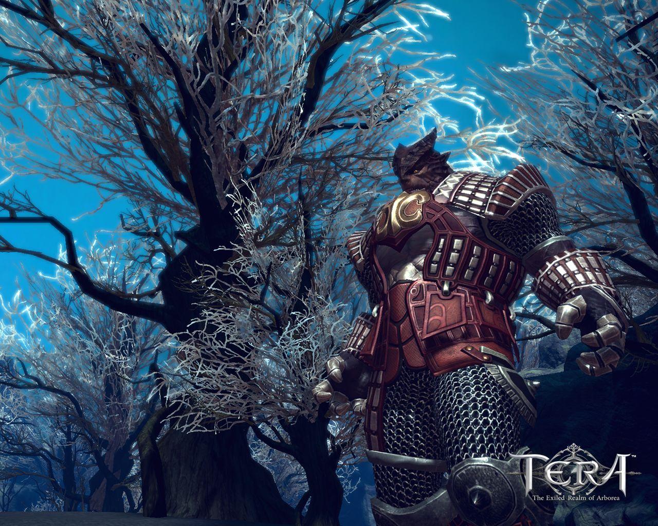 Fond dcran TERA The Exiled Realm Of Arborea   1280x1024 1280x1024