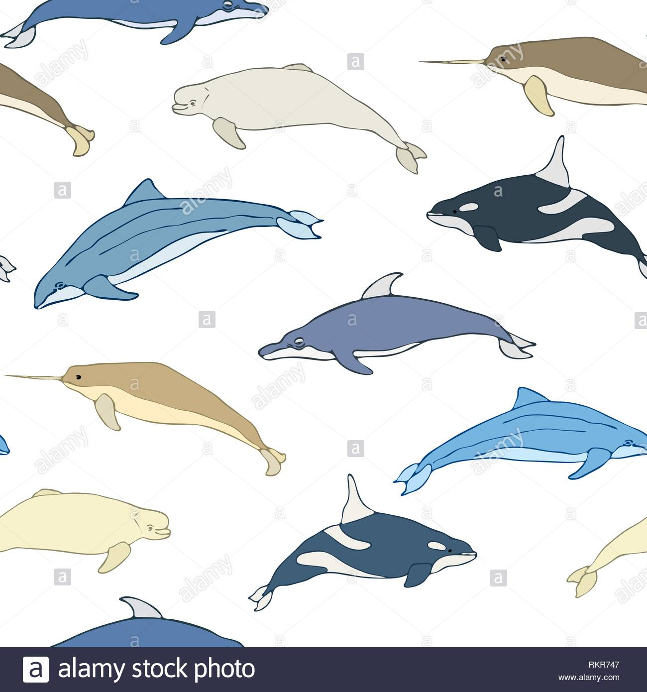 Seamless pattern of cartoon whales Set of species of whales on a 1300x1390