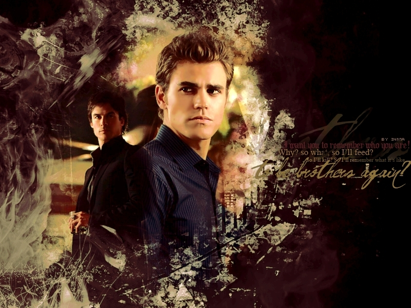 Stefan Salvatore images Stefan and Damon HD wallpaper and background 800x600
