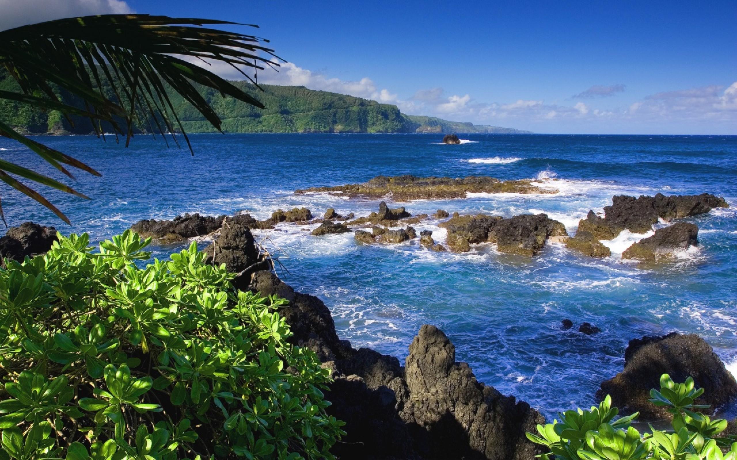 Hawaii Wallpaper 2560x1600