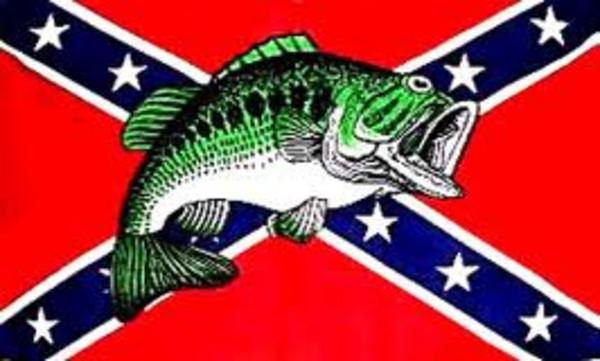 rebel flag image ve 600x361