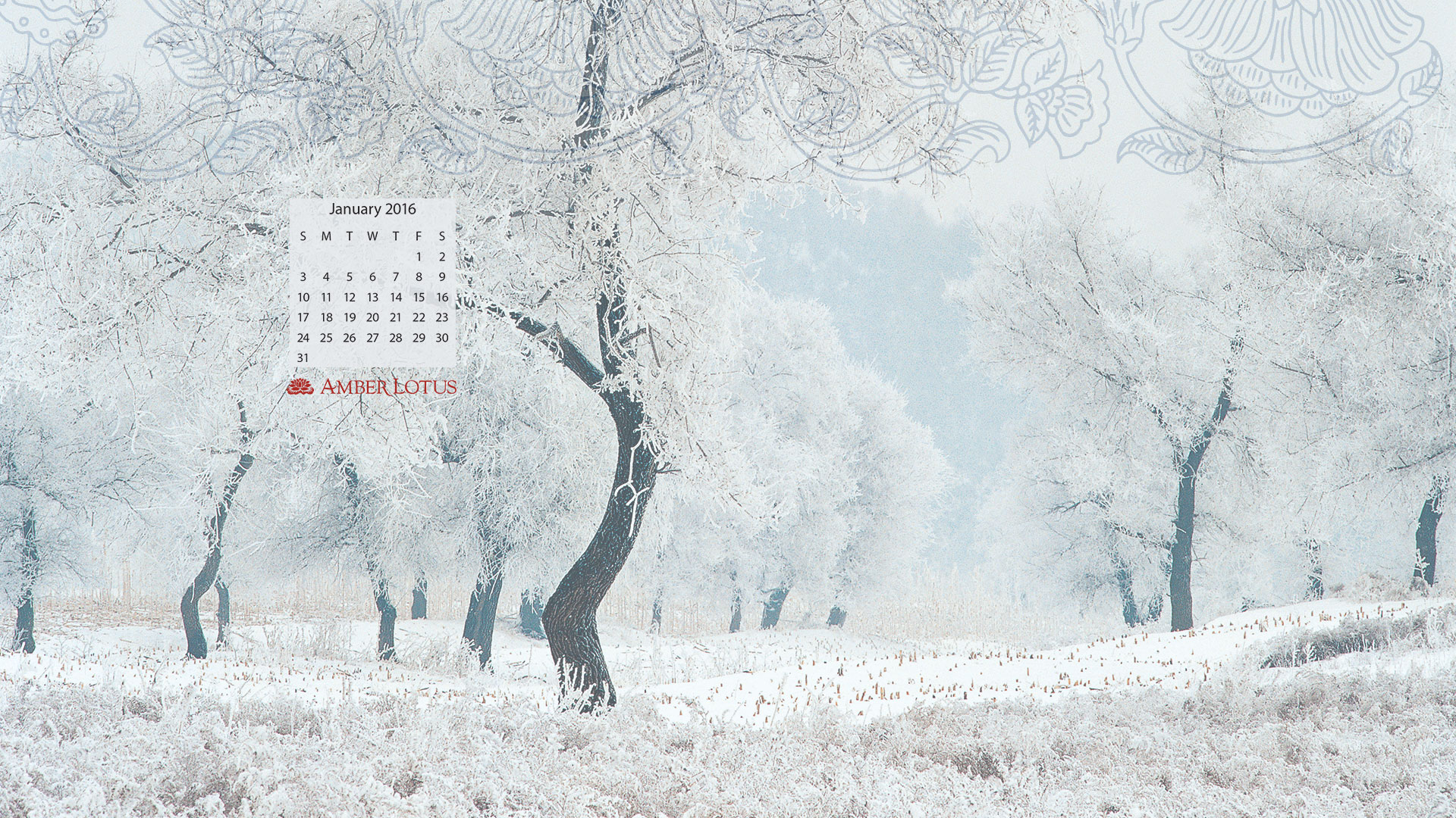 Desktop Wallpaper Calendar January 2016 to Download 1920x1080