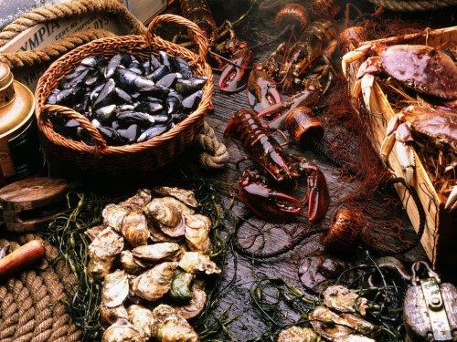 seafood wallpaper