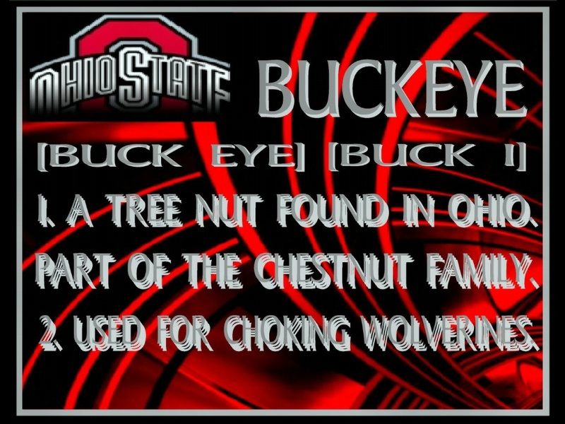 BUCKEYES DEFINITION BUCKEYE DEFINITION Sports Football HD Wallpaper 800x600