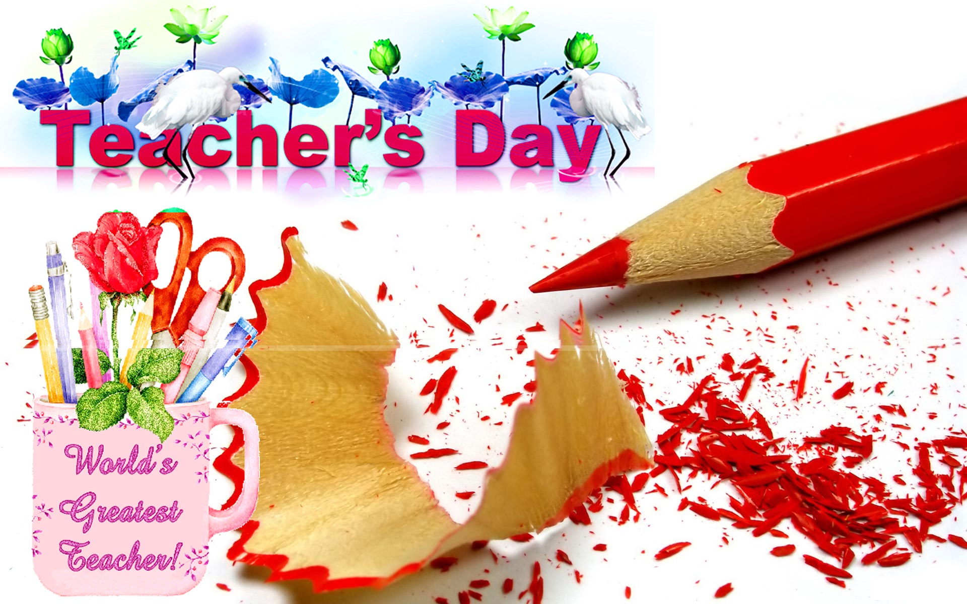5th september Teachers Day Images GIF Wallpapers Photos Pics 1920x1200