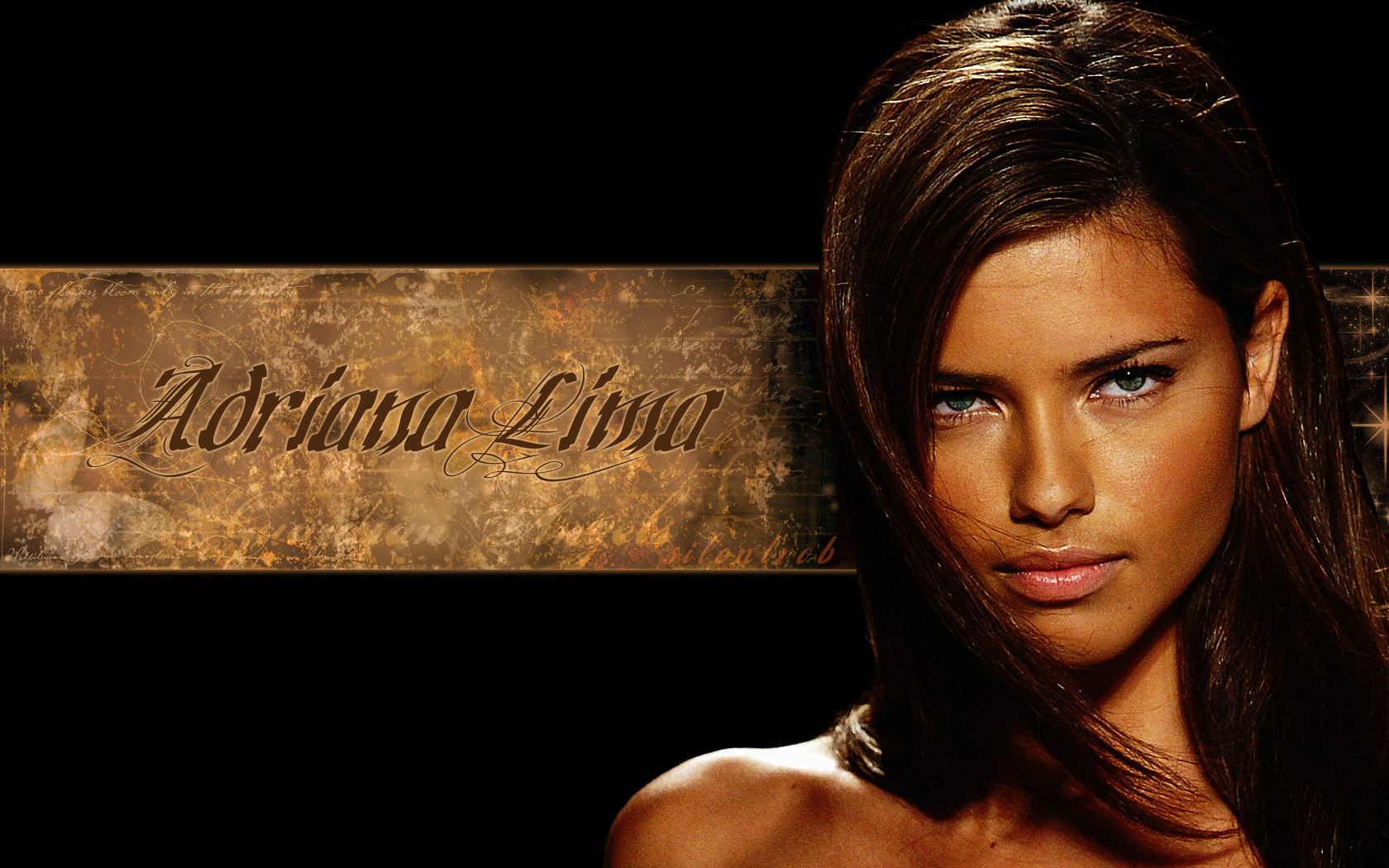 Adriana F Lima   Victorias Secret Wallpaper 4000958 1680x1050