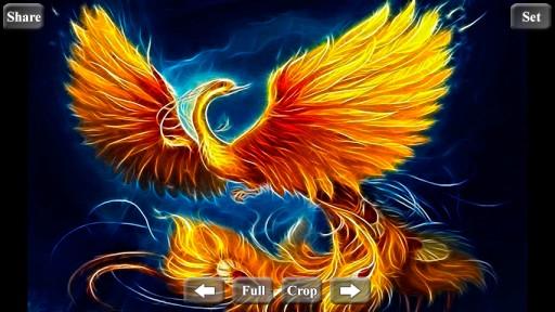 Phoenix wallpaper hd wallpapersafari - Fenix bird hd images ...
