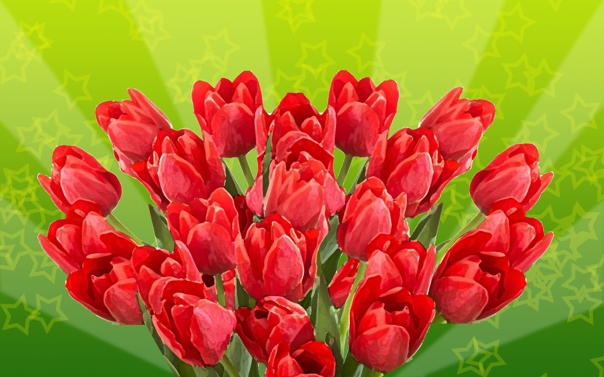 google images flowers wallpaper wallpapersafari