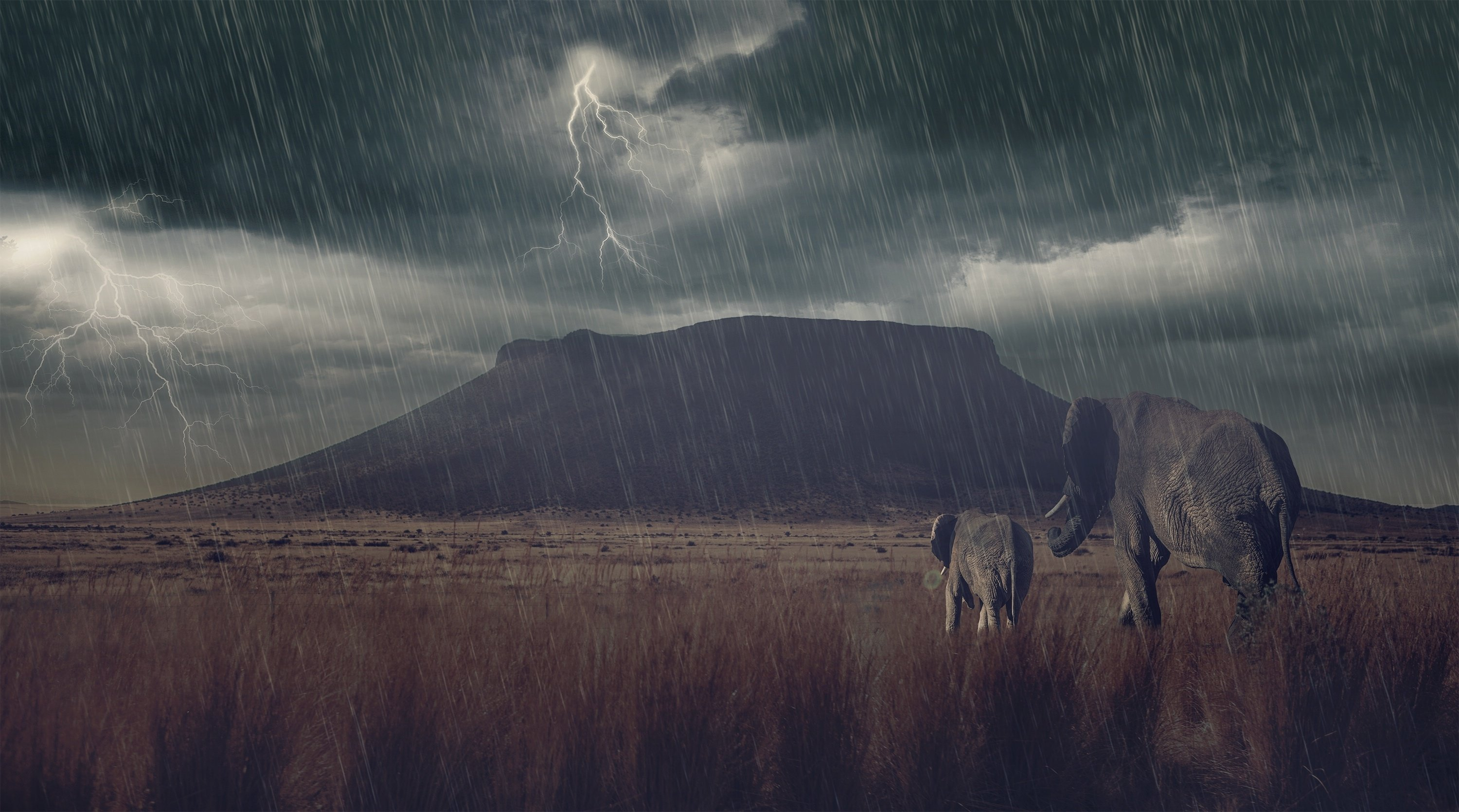 rain mountain storm baby photoshop art artwork wallpaper 3000x1670 3000x1670