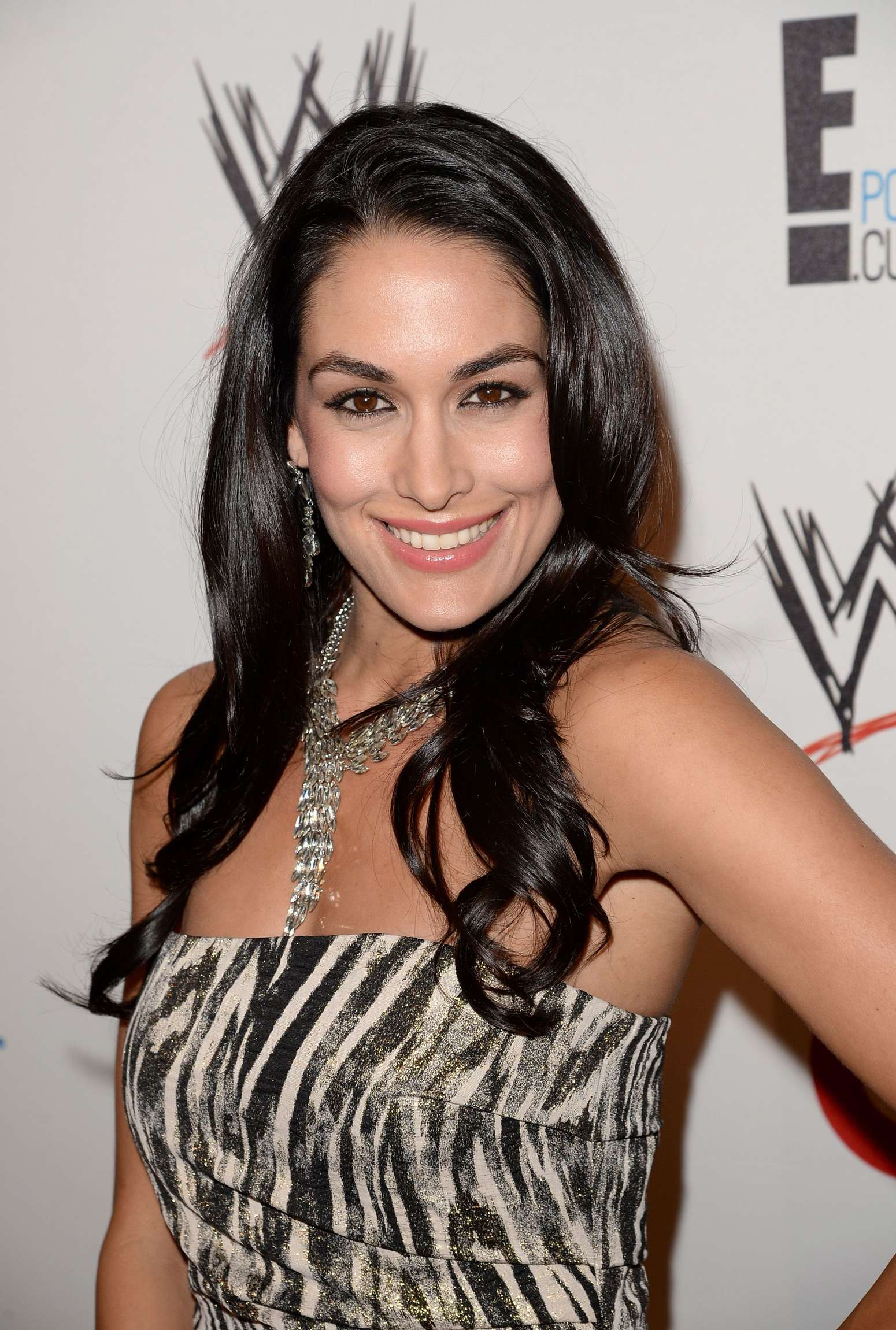 Brie Bella   2013 WWE and E Ent 1550x2301