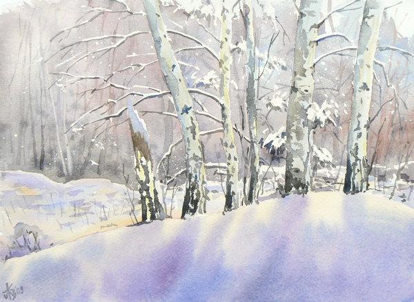 Birch Trees in Winter Wallpaper Birch trees in Winter by 600x438