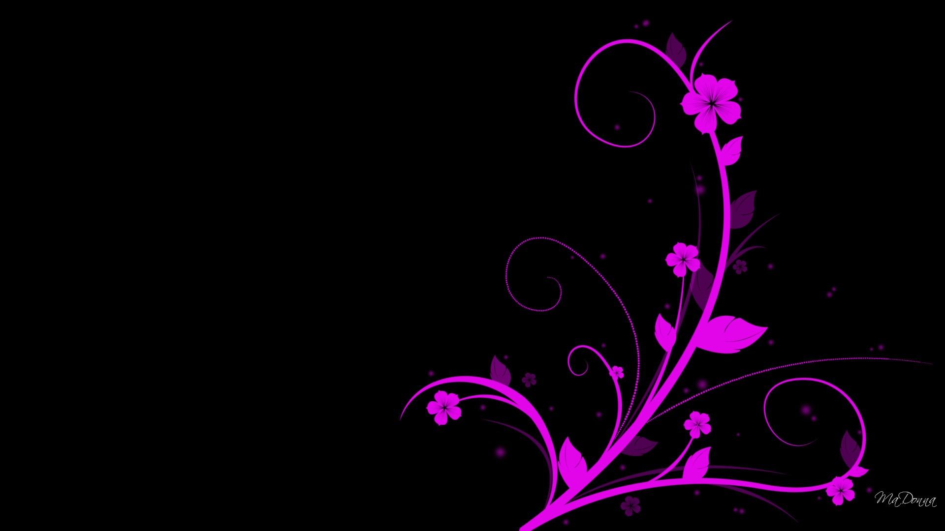 Free Download Rose Vif Sur Fond Noir Wallpaper