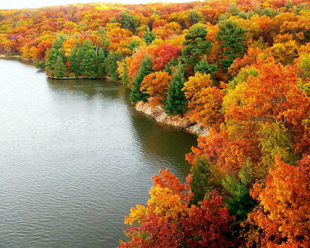 Free Desktop Wallpaper Autumn Scenery