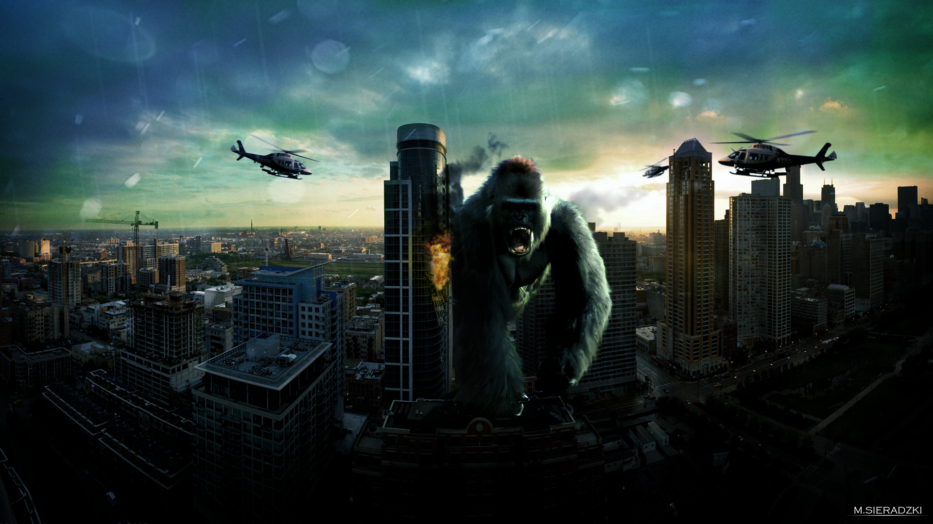 King kong pictures wallpaper wallpapersafari - King kong 2005 hd wallpapers ...