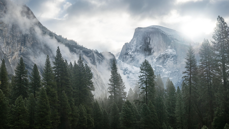 Yosemite Wallpaper Nature Forest Yosemite 5k Wallpapers 5932x3337