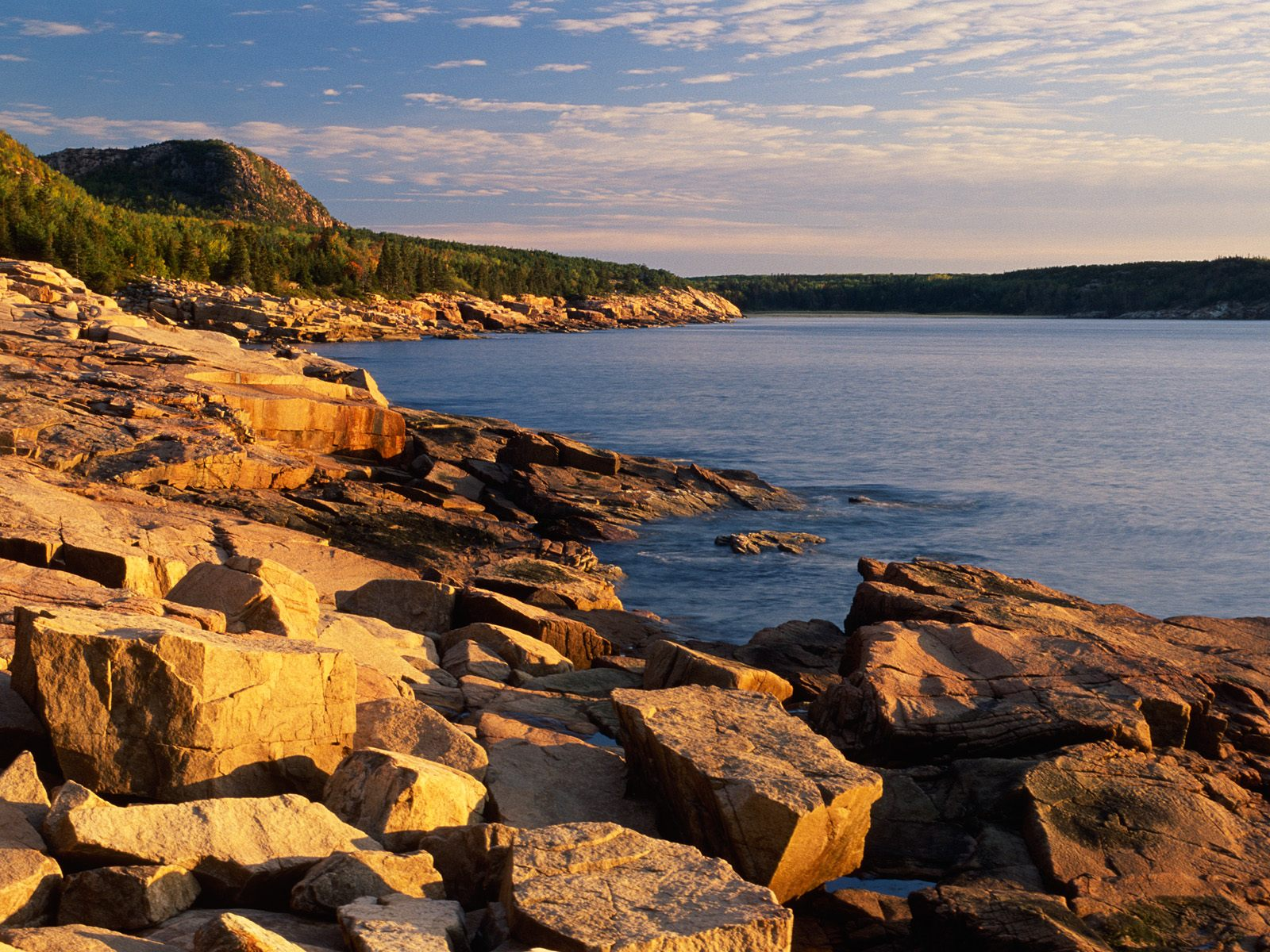otter cliffs acadia national park maine wallpaper national parks usa 1600x1200