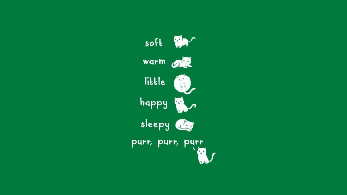 Free Download The Big Bang Theory Soft Kitty Song Wallpaper High