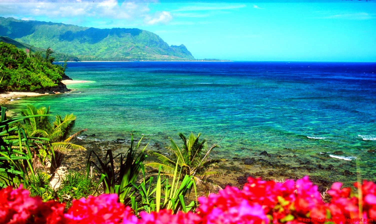 the background information of hawaii Hawaii facts, maui hawaii vacation information, weather, map of maui, flowers, frequently asked questions, books, links, everything to help you plan your maui.