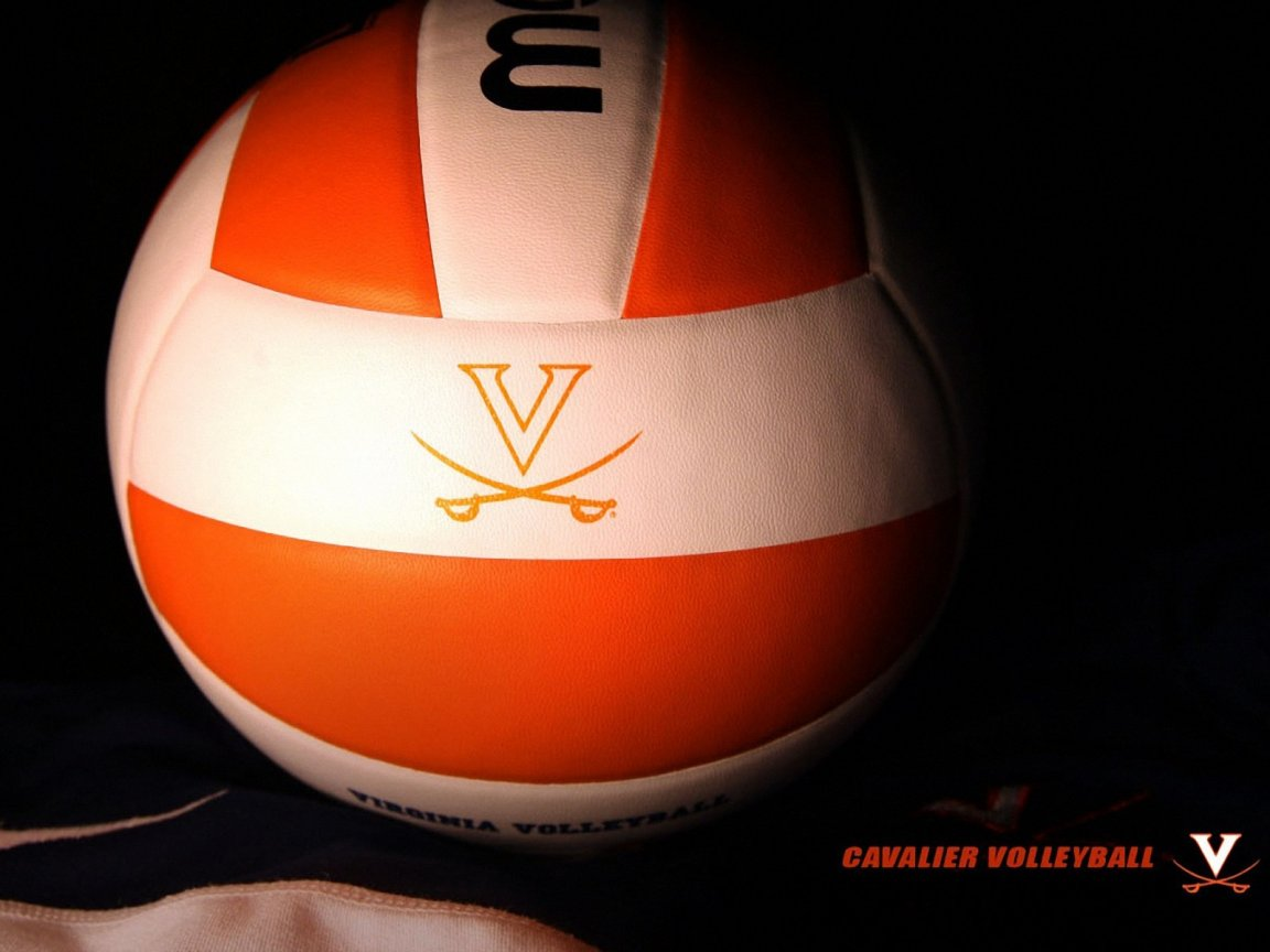 Volleyball wallpaper 1152x864 Wallpapers 1152x864 Wallpapers 1152x864