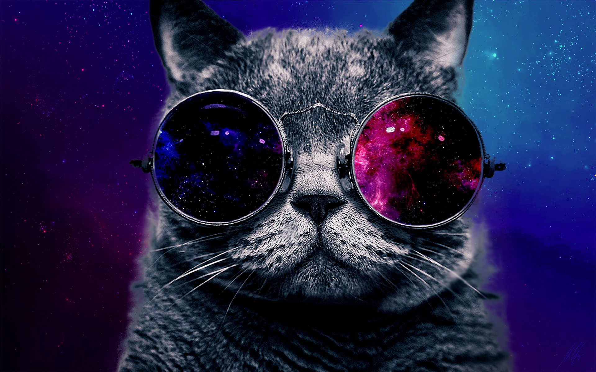 Tumblr Cat With Galaxy Glasses High cat with sunglasses 1920x1200